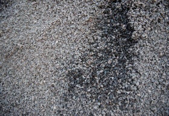 7. Raw Materials