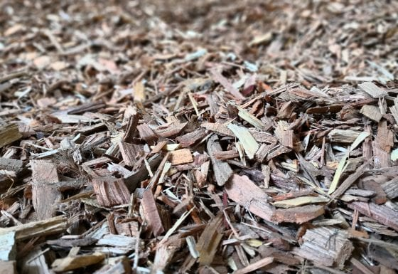 5. Raw Materials