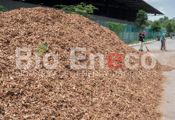 10. Raw Materials