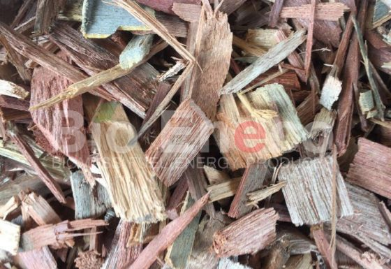 4. Raw Materials