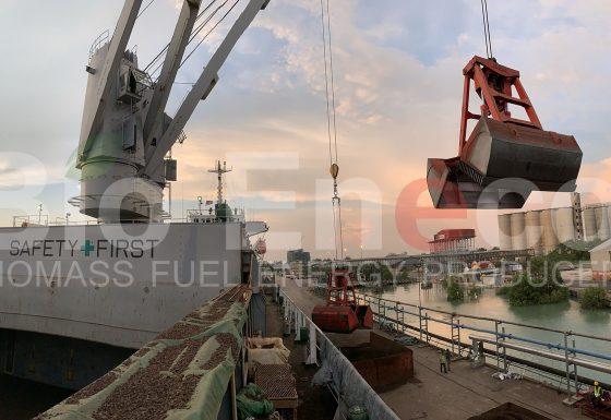 17. Shipment